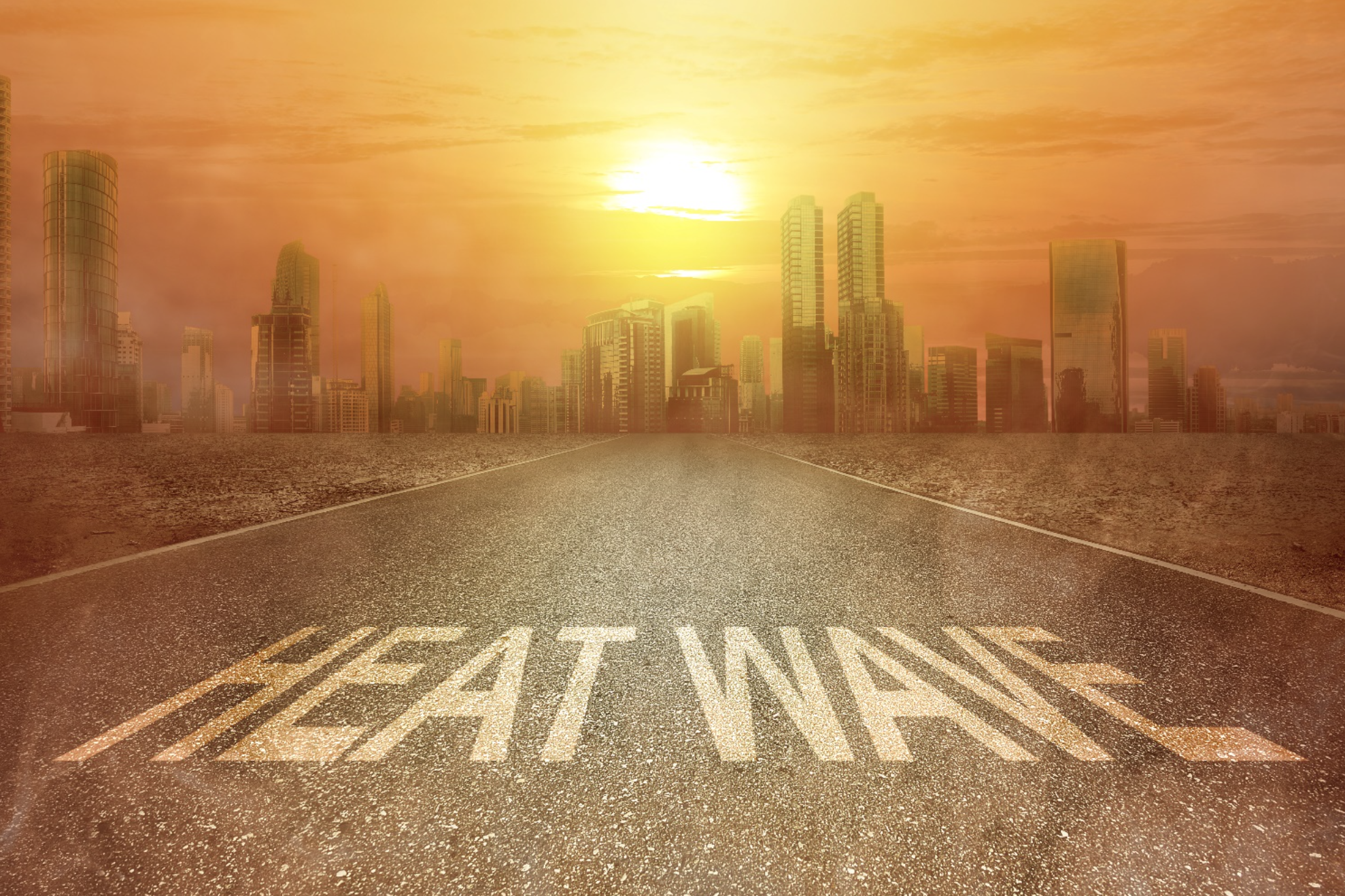What is the most effective way to reduce the temperature and energy consumption in your city?
